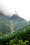 Geheimzinnige, eenzame die bergtop door bos wordt omringd Stock Foto