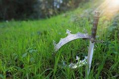 geheimzinnige en magische foto van zilveren koningskroon en zwaard in het hout van Engeland of gebiedslandschap met lichte gloed  stock fotografie