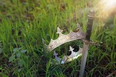 geheimzinnige en magische foto van zilveren koningskroon en zwaard in het hout van Engeland of gebiedslandschap met lichte gloed  royalty-vrije stock foto's
