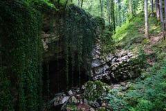 Geheimzinnige holingang in grote steen met Liana in bos Stock Afbeeldingen