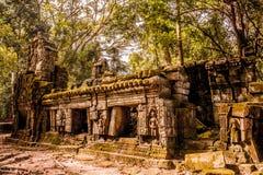 Geheimzinnige ruïnes van de oude tempel van Ta Prohm stock afbeelding