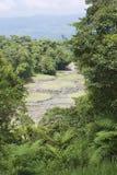 Geheimzinnige ruïnes van Guayabo DE Turrialba, Costa Rica Royalty-vrije Stock Foto