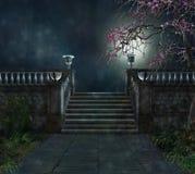 Geheimzinnigheid in een donker park Royalty-vrije Stock Foto's
