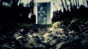 geheimzinnigheid Een vreemde wereld De geheimzinnige deur stock videobeelden