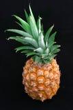 Gehele Ananas op Zwarte stock foto