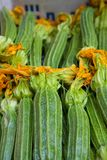 Gehele Courgette met Bloemen Stock Foto's