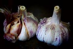 Gehele garlics Stock Foto's