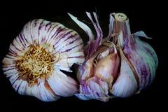 Gehele garlics twee Stock Foto's