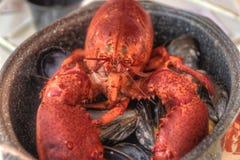 Gehele Geroosterde Zeekreeft met Mosselschaaldieren in een Pot stock foto's