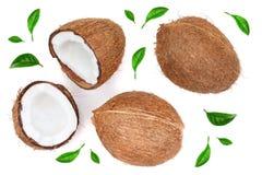 Gehele kokosnoot met half verfraaid die met bladeren op witte achtergrond worden geïsoleerd Vlak leg Hoogste mening royalty-vrije illustratie