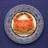 Gehele krab op decoratieve plaat Royalty-vrije Stock Afbeeldingen