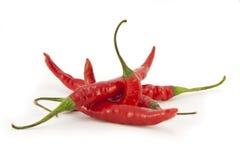 Gehele rode Spaanse pepers Vector Illustratie