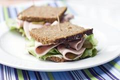 Gehele tarwesandwich met Turkije Stock Afbeeldingen