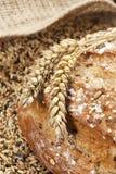Gehele van de korrelbrood en tarwe oren stock afbeeldingen