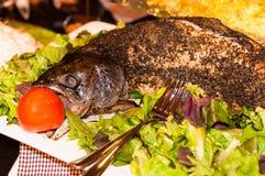 Gehele zalmvissen die in oven met groene salade worden gekookt stock afbeelding