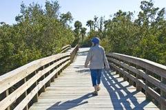 Gehen über Brücke Lizenzfreies Stockfoto