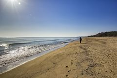 Gehen auf den Sand Stockbilder