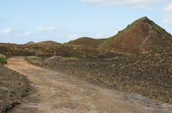 Gehen auf die Insel von Lobos Lizenzfreies Stockbild