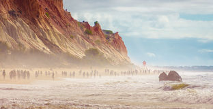Gehen in den nebeligen Strand Lizenzfreies Stockfoto