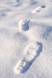 Gehen in den Schnee Lizenzfreie Stockbilder