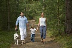 Gehen in den Wald Lizenzfreie Stockfotos