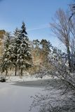 Gehen in den Winter stockfoto