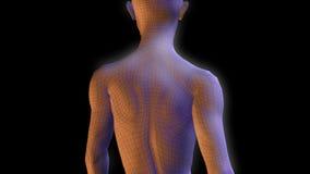 Gehen der cyborg-bionisches Frauen-3D lizenzfreie abbildung