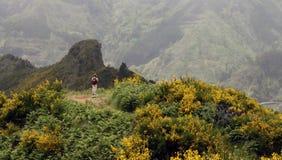 Gehen in die Berge stockfotografie