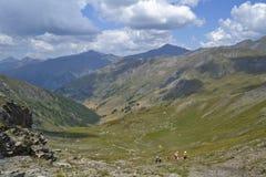 Gehen in die französischen mounains Lizenzfreie Stockfotos