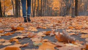 Gehen durch die Herbstblätter stock video footage