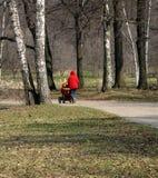Gehen in einen Park lizenzfreies stockbild