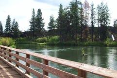 Gehen entlang den Dechutes-Fluss Lizenzfreie Stockfotografie