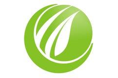 Gehen Grün mit Blatt Stockfotos