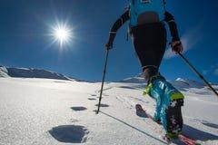 Gehen mit dem Gehen mit Skibergsteigen mit Seehundsfellen herein Lizenzfreie Stockfotos