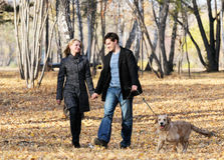 Gehen mit Hund Stockfoto