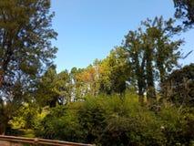 Gehen, schöne Natur, Himmel, grün Lizenzfreie Stockfotos