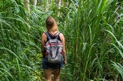 Gehen Sie durch Dschungel zu Wasserfall Dusun Kuning, Bali Stockfotos