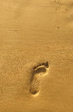 Gehen Sie entlang den Strand, Abdruck im goldenen Sand Stockbilder