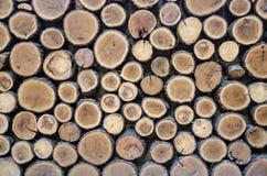 Gehen Sie für Holz:- Lizenzfreies Stockbild