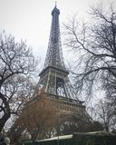 Gehen vor Notre Dame Stockbilder