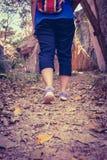 Gehende Übung der Frau im Wald, Motivgesundheitskonzept, O Stockbild