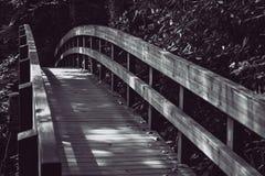 Gehende Brücke auf einem Wanderweg Lizenzfreies Stockbild