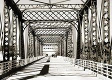 Gehende Brücke in Grand Rapids stockfotografie