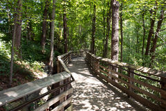 Gehende Brücke im Wald Stockfotos