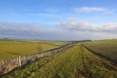Gehende Landschaft des Landes Stockbild