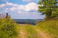 Gehende Spur auf einem Hügel in einem grünen Sommer gestalten landschaftlich Lizenzfreie Stockbilder