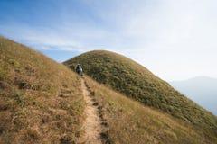 Gehende Spur der Berglandschaftsreitroute zum Nationalpark der Höchstberglandschaft mit gehender Spur der Reitroute zu stockbild