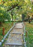 Gehender Fußweg in einem Herbst Japanergarten lizenzfreies stockbild