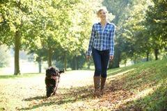 Gehender Hund der Frau Stockfoto