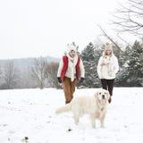 Gehender Hund der Paare im Winter Stockfotografie
